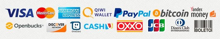 levpn payment